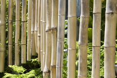 Bamboo Chimes Stock Photos