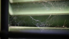 Spider web in front of abandoned house window Stock Footage