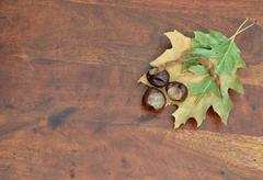 Leaves and chestnuts on teak surface Stock Photos