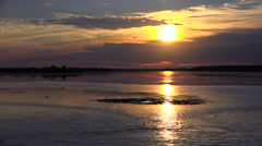 Stock Video Footage of Distant shorebirds at sunset along the wetlands of Florida's coast.