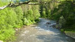 Mountain river landscape, Altai, Russia Stock Footage