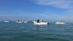 Motorboats head out to the open season at the beginning of fishing season. - stock footage