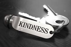 Kindness Concept. Keys with Keyring Stock Illustration