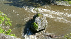 Stock Video Footage of big rock with young tree in mountain river
