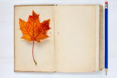 Autumn concept with book and fall leaf - stock photo