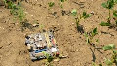 Somebody throws out the old motherboard on the ground in the field Stock Footage