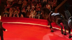 Horsemen Performance At Arena Of The Circus Stock Footage