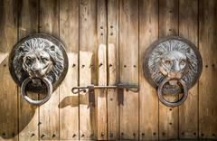 Antique door knocker shaped lion's head. - stock photo