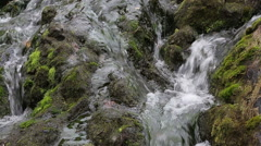 Jet forest stream, the stones and moss. Stock Footage