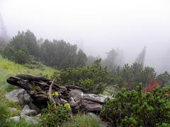 Zavizan, Velebit, Croatia, mist - stock photo