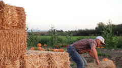 A handsome farmer picks up and stacks bales of hay. Stock Footage