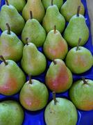 Pears arranged in a box placed on the counter markets. - stock photo