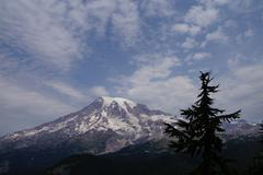 Mt. Rainier, with conifer forest Stock Photos