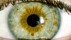 female green eye close up extreme macro,iris contracts - stock footage