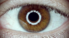 Slow motion macro CU eye iris pupil contracting eye light reflection. - stock footage