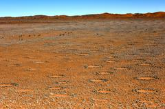 Fairy Circles - Namibia Stock Photos