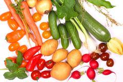 Harvest season, fresh vegetable - stock photo