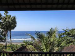 View from balcony of apartment to the ocean with palm trees Stock Photos