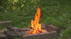 Small bonfire burning Stock Footage