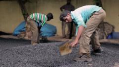 Stock Video Footage of Workers constructing roads in Mumbai