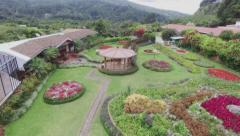 Flower garden and green grass Stock Footage