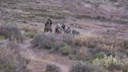 Stock Video Footage of Nomads traveling on horse