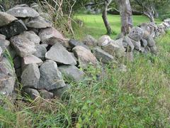 Traditional drystone fence - stock photo