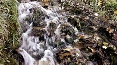 A rapid stream near the lake in autumn Stock Footage