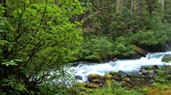 Pan of spring melt water flowing over Cascade Creek waterfall in Thomas Bay, Stock Footage