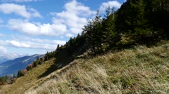 mountain landscape early in autumn - stock footage