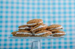 Homemade Oatmeal Cream Pie Cookies - stock photo