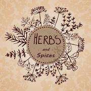 Vector background hand drawn herbs and spices. - stock illustration