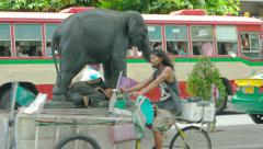 Homeless person sleeping beneath an elephant statue. Bangkok, Thailand Stock Footage