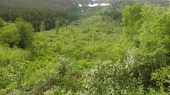 Aerial Montana Glacier National Park Stock Footage