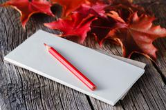 Open notebook and pen in autumn ambient - stock photo