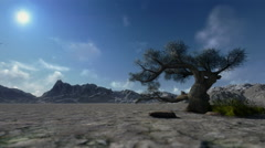 Mountain and solitary tree, timelapse clouds Stock Footage