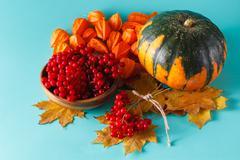 Fall harvest on aquamarine shadowless background - stock photo