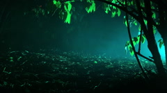 Scary fog with changing colors in woods Stock Footage