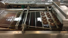 Donuts going through production line - stock footage