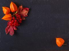 Red viburnum on black slate background with message menu - stock photo
