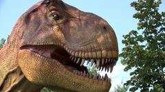 Tyrannosaurus Rex animatronics at theme park 4k - stock footage