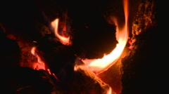 Closeup Of Fading Campfire In The Night Stock Footage