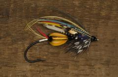 Jock Scott Salmon Fly - stock photo