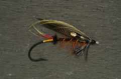 Stock Photo of Thunder and Lightning Salmon Fly