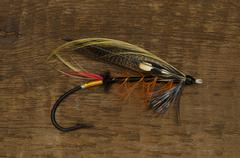 Stock Photo of Thunder and Lightning Salmon Fly