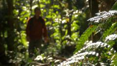 Man Hiking Walking In Outdoors Jungle Stock Footage