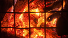 Fire of wood in the cage Stock Footage