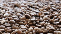Arabica coffee beans arranged for tilting over 4K 2160p UltraHD footage  - stock footage