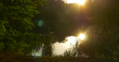 Lakeshore Sunset Sunlight Reflects On The Water Surface Trees Grass Reed Warm - stock footage