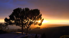 A beautiful sunrise or sunset along the California coast with a silhouetted tree Stock Footage